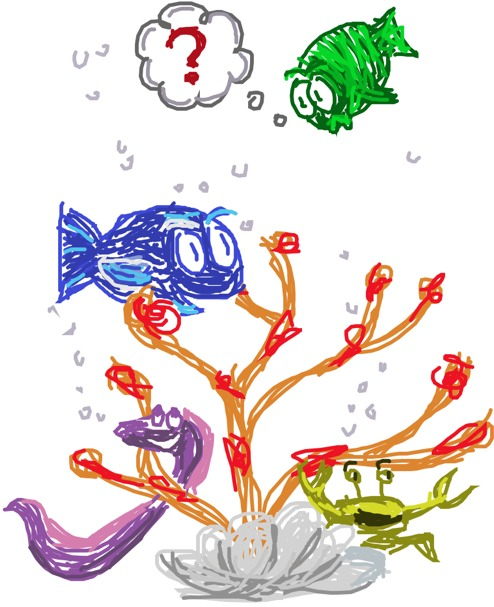 peixes num Corais